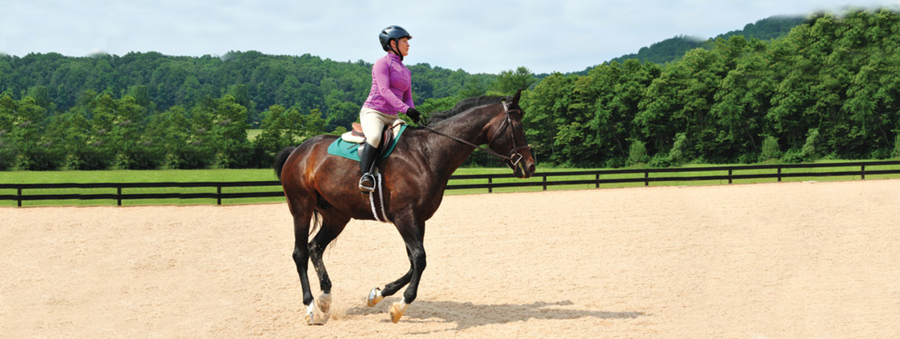 Matchsaver for Equestrian equestrian